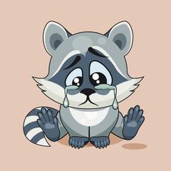 Sad Raccoon cub crying