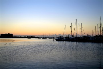 beautiful sunrise from Coconut grove marina, sailboats, water sports