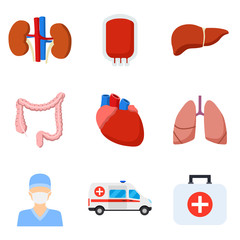 Internal organs icons
