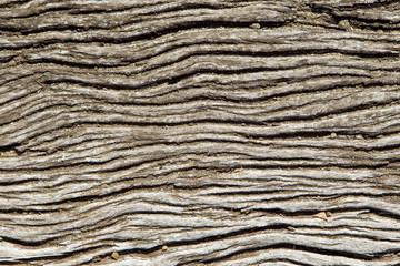 Wavy wooden background