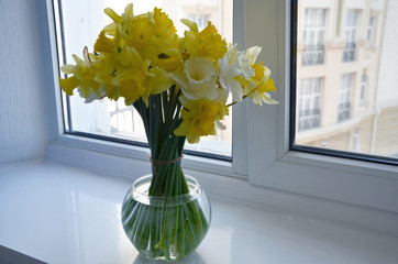 Daffodils are in a clear round vase on a background of a window