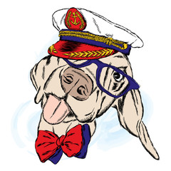 Cute dog in the captain's cap. Captain. Sailor. Vector illustration.