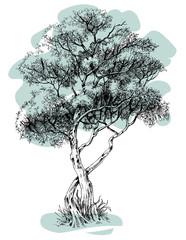 Tree vector isolated