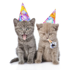 Two funny kittens with birthday hats. isolated on white backgrou