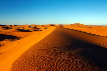 sahara desert dune