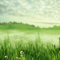 Beauty spring time. Abstract natural backgrounds