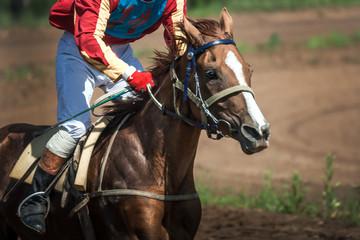 race horse in run