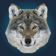Abstract Low Poly Wolf Design