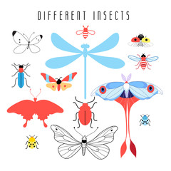 Set of different insects