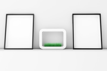 Blank Picture Frames with Grass in White Ceramics Planter on the