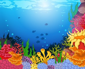 beauty coral and underwater view background
