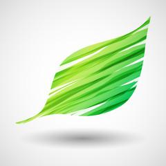 Obraz zielony liść ikona wektor - fototapety do salonu