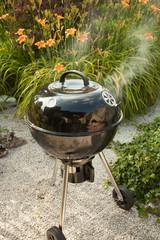BBQ grill on a backyard