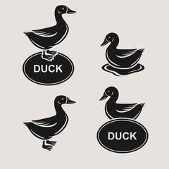 duck set. Vector