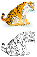 Colorful black and white pattern of tiger, vector cartoon image.