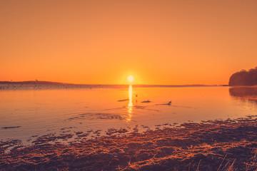 Lake sunrise with ducks