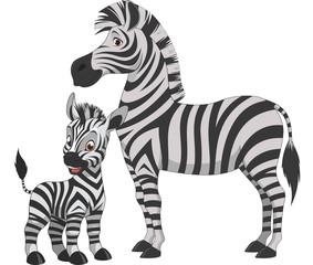 Adult zebra with cub