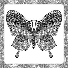 Coloring page of  Balck Butterfly, zentangle illustartion