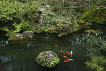 日本庭園 (洗心庵)