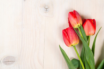 Tulips on a wooden background. Space for text. Top view