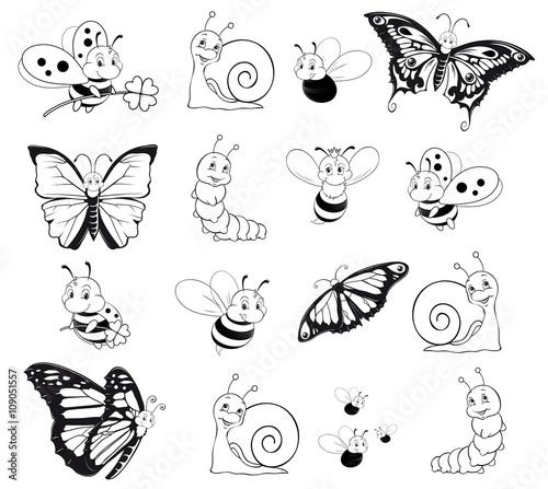 """""""insect assortment outlines ausmalbild insekten sortiment"""