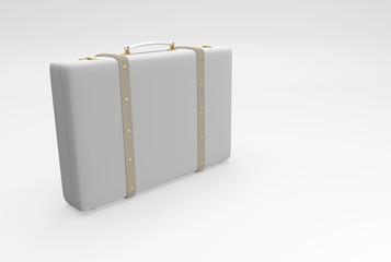 gray elegant suitcase
