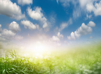 Abstract spring background 2
