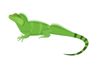Chinese water dragon vector illustration