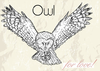 Poster with owl. Vintage style.
