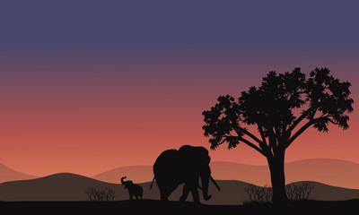 Africa landscape with elephant silhouette
