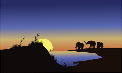 Silhouette family elephants at the sunset