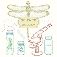 Education and science: biology, chemistry, physics retro sketch