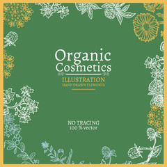 Organic cosmetics template herbs and plants