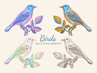 Vintage birds Collection