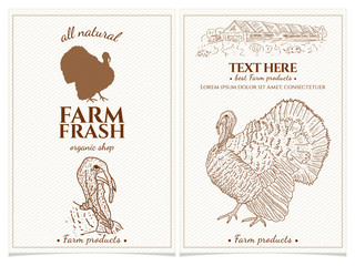 Turkey farm fresh products design template vintage