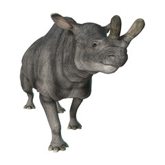3D Rendering Brontotherium on White
