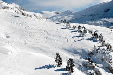 Paysage de montagne enneigé avec traces de ski