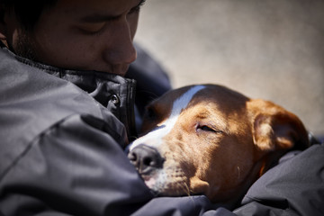 man holding sleepy puppy dog closeup selective focus concept social issue homelessness poverty animal rights