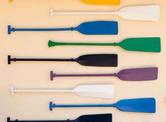 paddles colorful on the wall