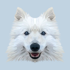 White Samoyed dog animal low poly design. Triangle vector illustration.