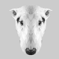 Staffordshire bullterier dog animal low poly design. Triangle vector illustration.