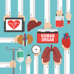 Human organ for transplantation design flat