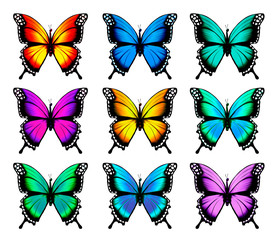 Wall Mural - Beautiful orange butterfly in different positions. Vector.