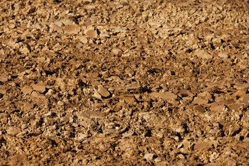 plowed land. close-up.