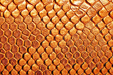 Wall Mural - Brown snake skin, can use as background