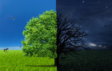 The concept of doubleness. Day and night of different side with