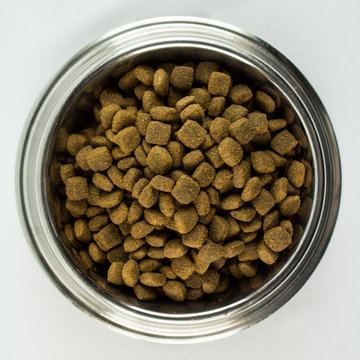 Full Bowl of Dogfood