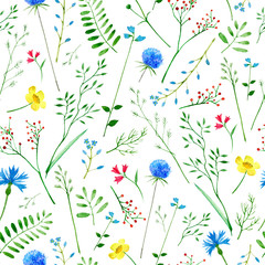 Floral seamless pattern.Colorful floral pattern with wild flowers and herbs on a white background, drawing watercolor.