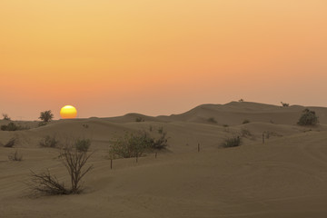 Sand dunes desert near Dubai in UAE
