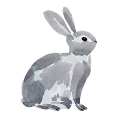 Watercolor illustration of a rabbit.